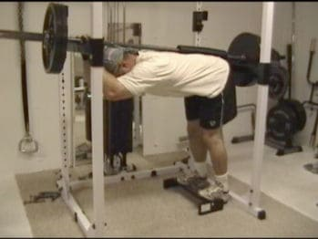 Power Rack Donkey Calf Raise Bodybuilding Com Forums